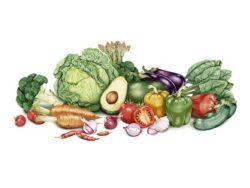 alimenti per vibrazione energetica